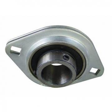 Insert Bearing Fr155 0.1562*0.3125*0.1094 Inch Plastic Bearing Balls Bolt Flange Bearing