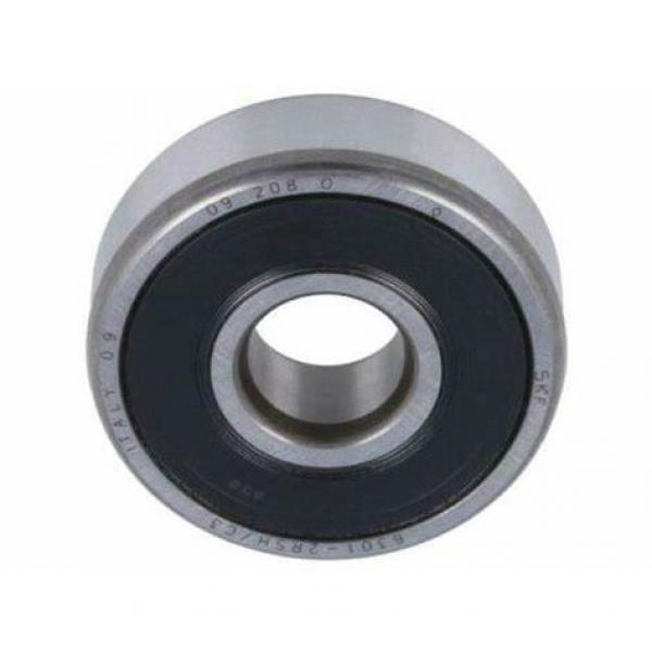 NSK NTN Sweden Deep Groove Ball Bearing Japan NACHI 6301 #1 image